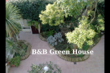 B&B Green House